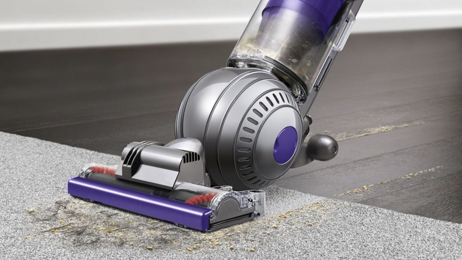 Dyson Ball Animal 2 pet vacuum