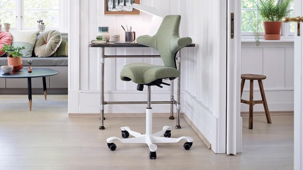 HAG Capisco Chair ergonomic office seat