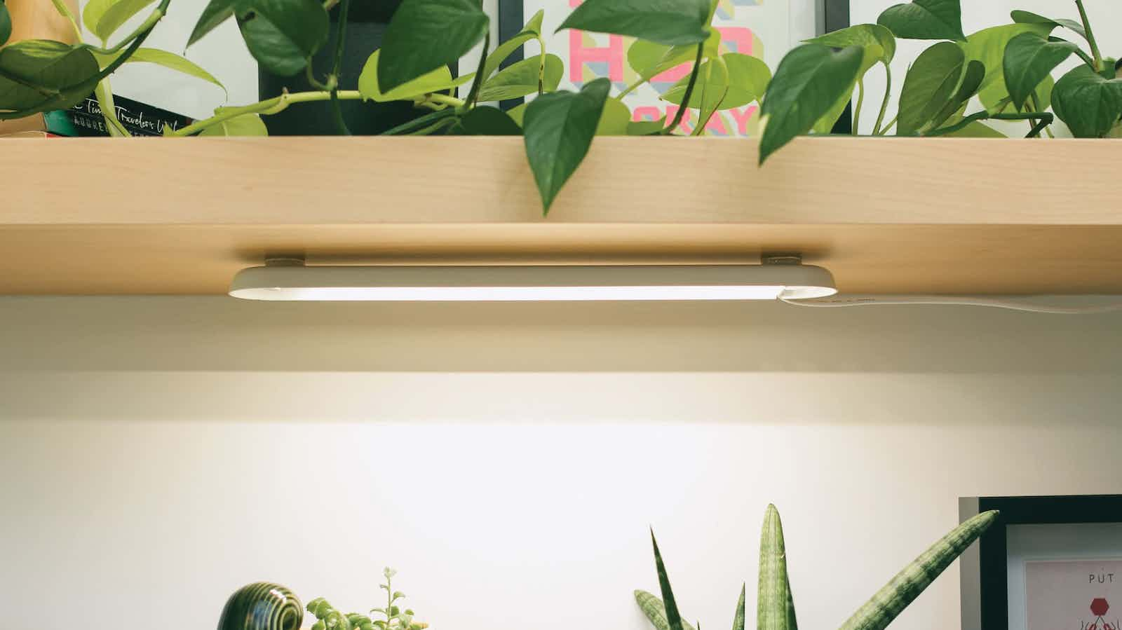Modern Sprout Smart Growbar plant light offers full-spectrum LEDs for your greenery