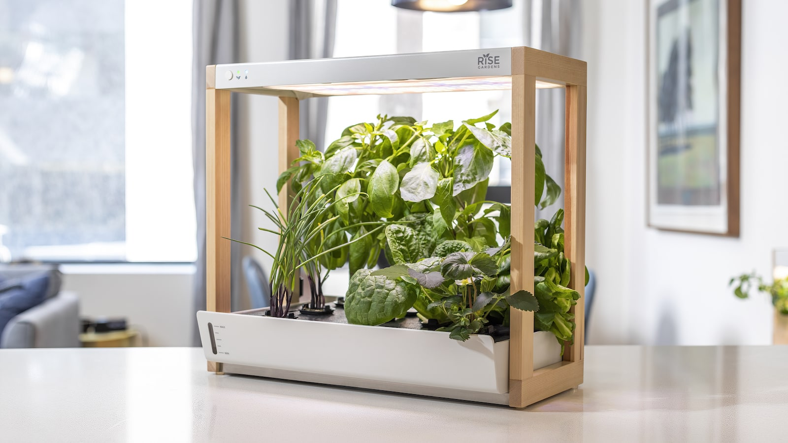 Rise Gardens Personal Rise Smart Garden lets you grow herbs, veggies and leafy greens