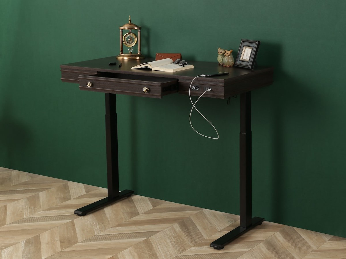 FlexiSpot Theodore standing desk lifts and lowers with a motor and has 3 USB ports