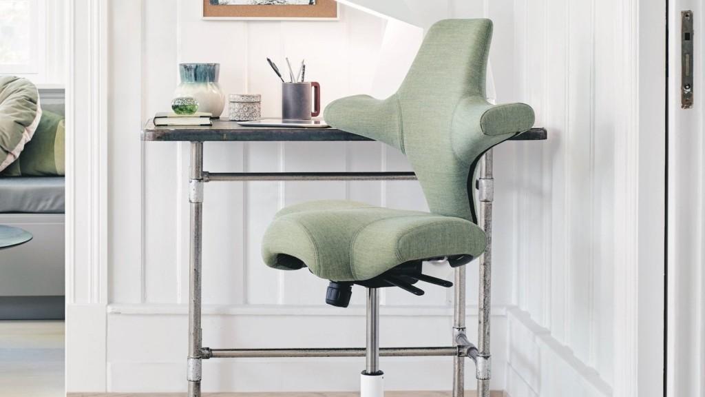 H-G Capisco Chair ergonomic office seat