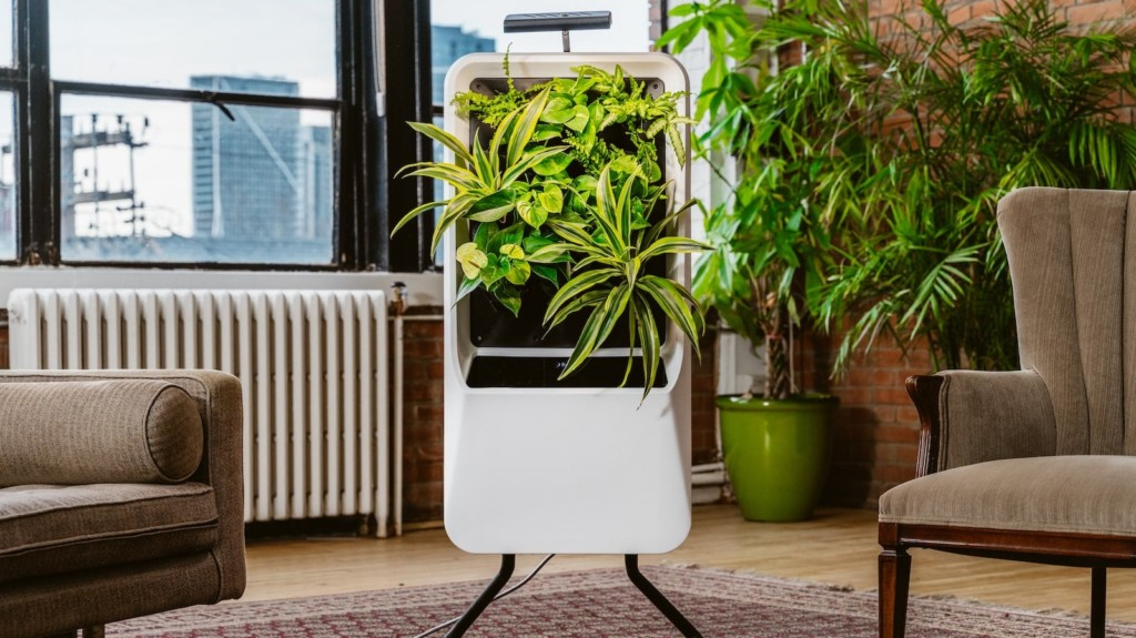 The best air purifiers to buy in 2021—smart designs, quiet filters, window-mounted, and more Respira smart air-purifying garden