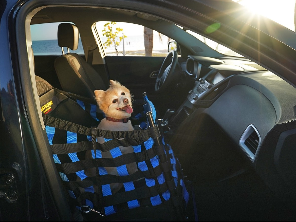 Wuffguard dog car seat is designed to protect your pup from up to 2,000 pounds of force