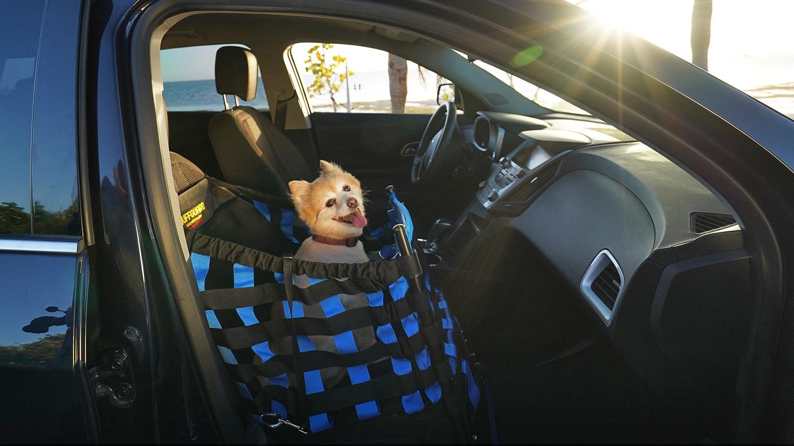 Wuffguard-Dog-Car-Seat-01.jpg