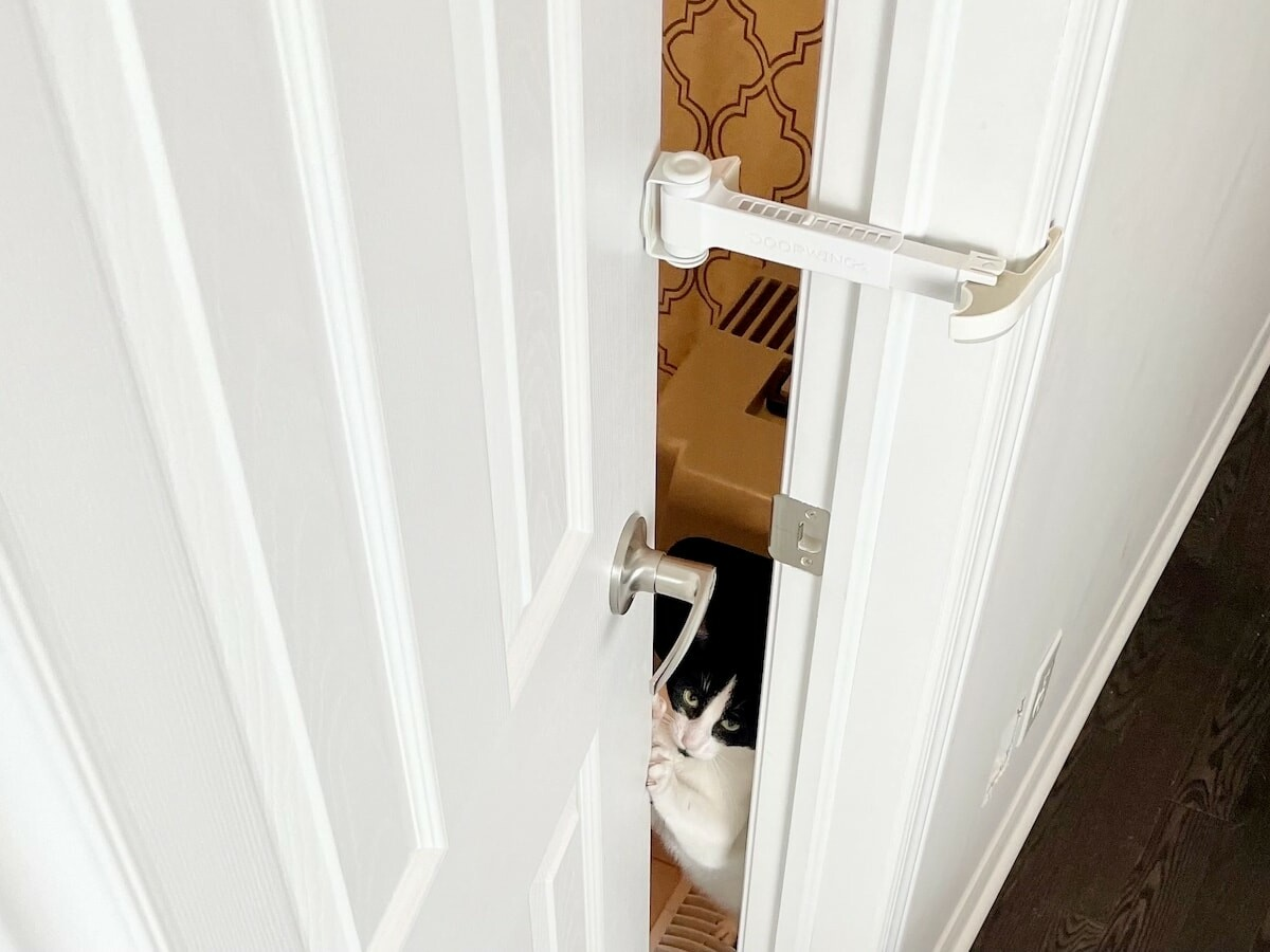 DOORWING Door Lock and Finger Guard keeps your kids and dogs out of the cat's litter box
