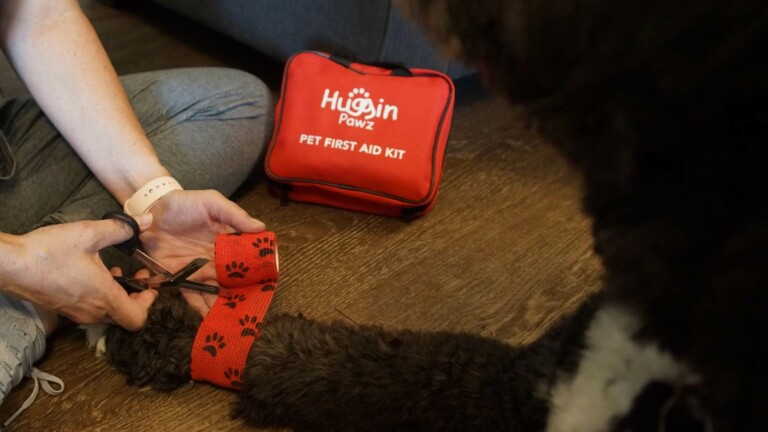 Huggin Pawz Pet First Aid Kit includes 78 supplies to keep you prepared for emergencies