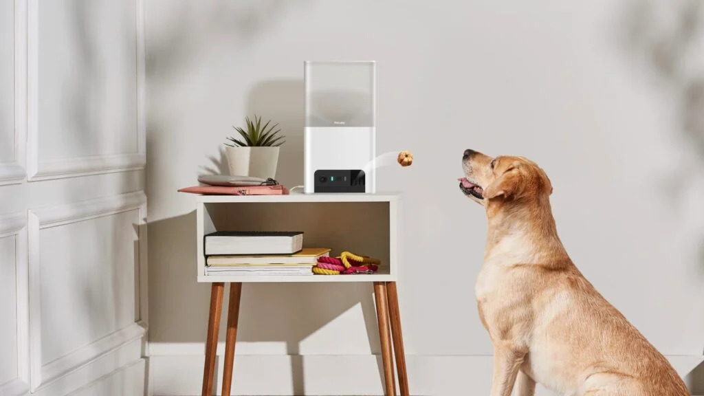 This smart pet camera by Petcube has wide views, 2-way audio, and dispenses treats