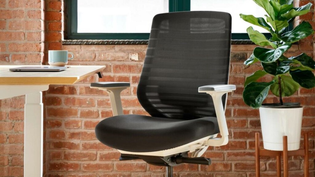 Branch Ergonomic Chair for offices