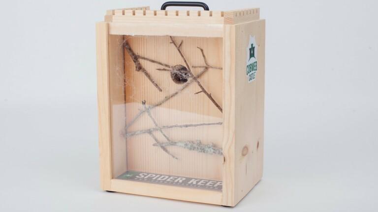 Cobweb Castle Spider Keep arachnid house is a little home for your eight-legged friend