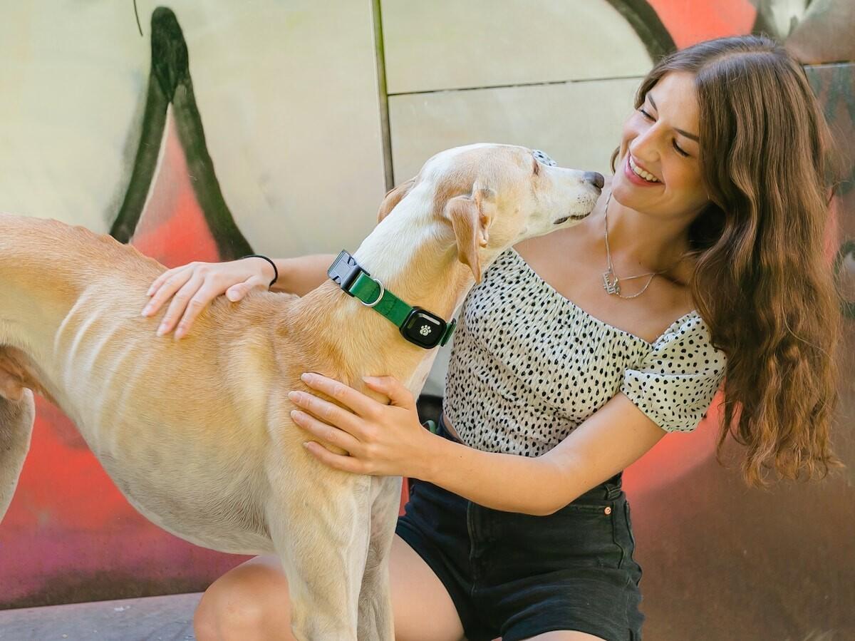 MyPetGo health & location monitor tracks your pet's location, activity, behavior, and more