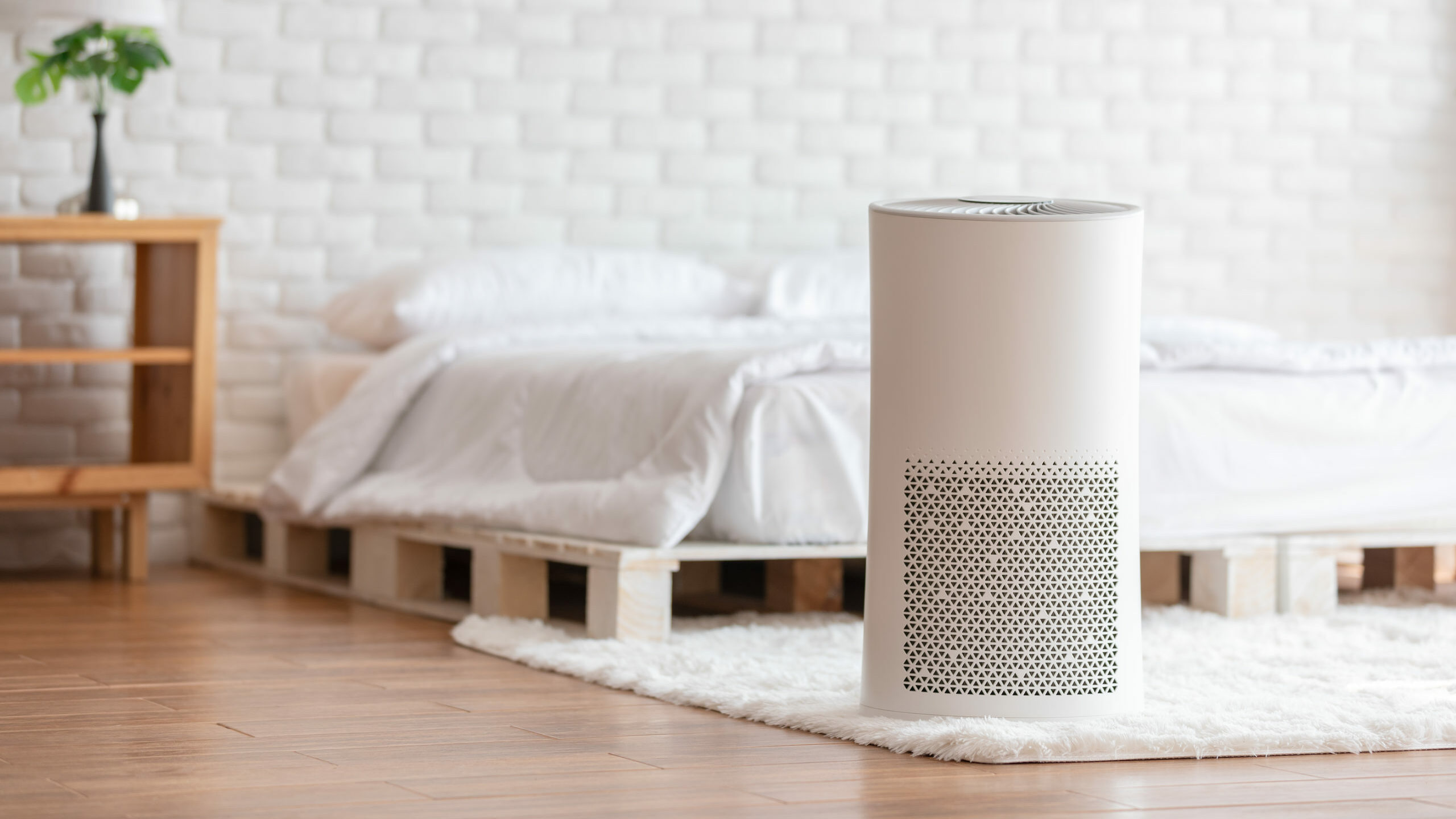 Wearable air purifiers—do they actually work, and should you buy one?