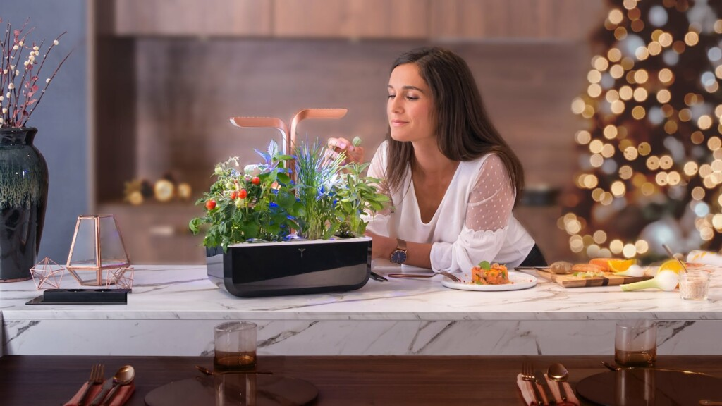 Most sustainable kitchen gadgets you can buy in 2021