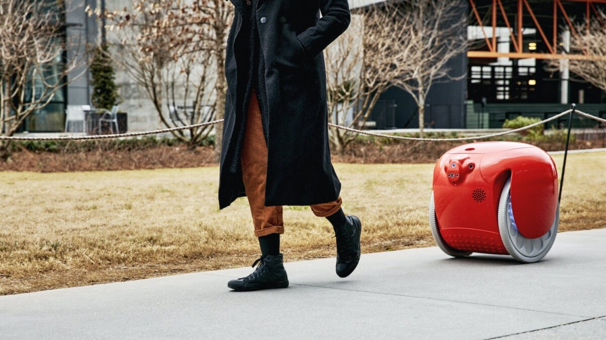 Now there's actually a robot that can carry your gear for you